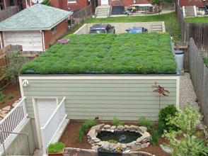 بام های سبز