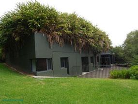 پشت بام های سبز