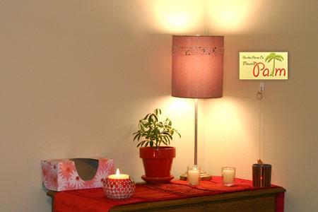 میزان نور گیاهان آپارتمانی