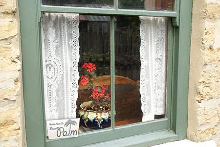محل قرار دادن گلدان گیاهان آپارتمانی