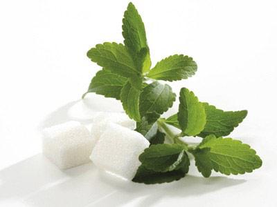 استویا 250 برابر شیرین تر از قند