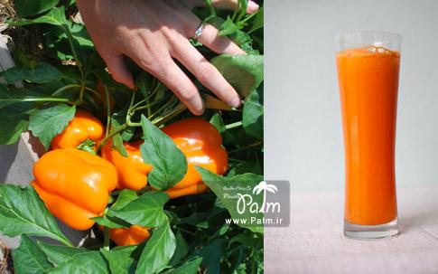 بذر فلفل دلمه پرتقالی