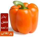 بذر فلفل دلمه پرتقالی Paprika Orange